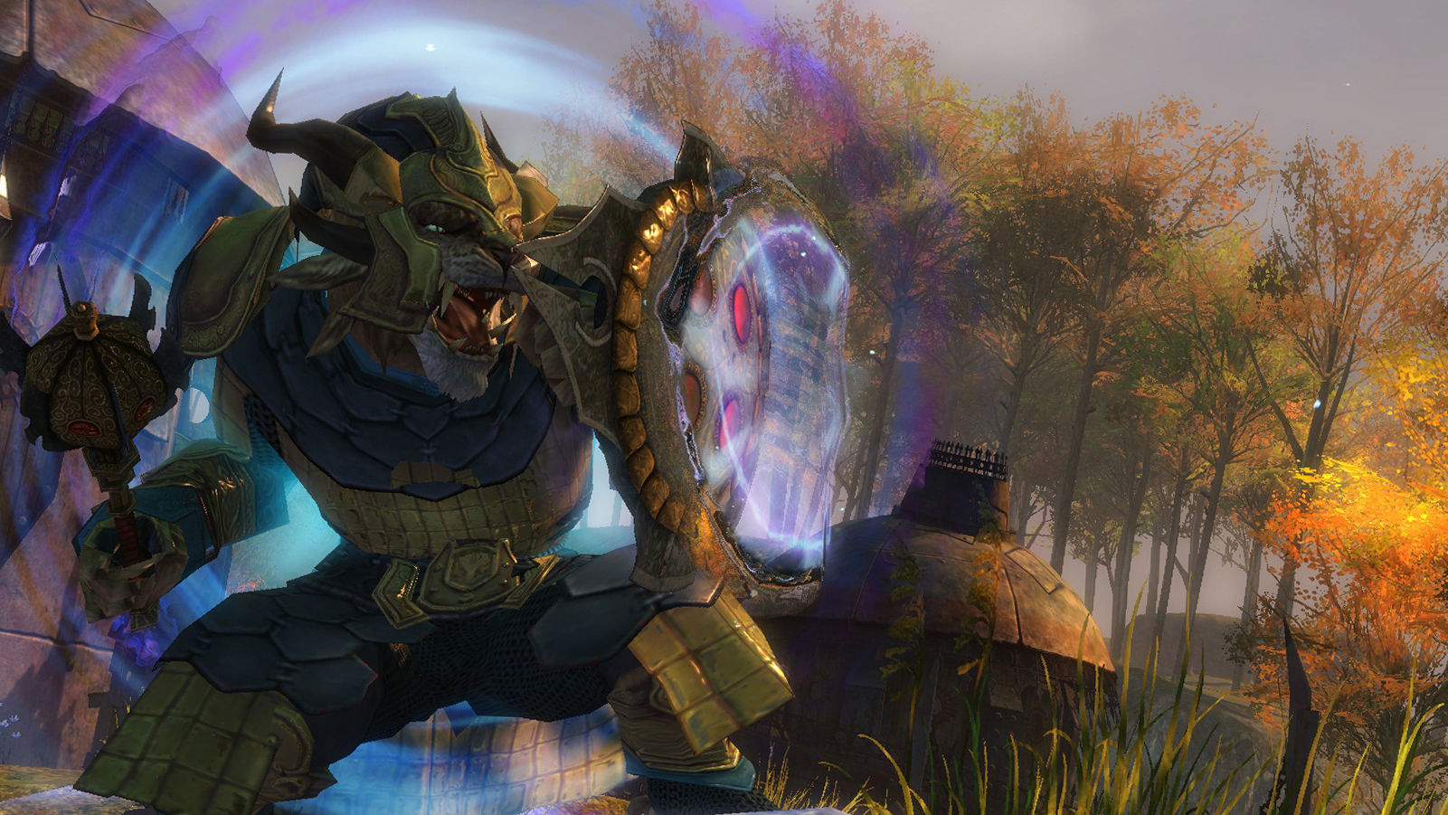 IMAGE(http://www.guildwars2.com/global/includes/images/screenshots/guardian/guardian03.jpg)